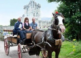 Horse and Carriage Ride to Ross Castle