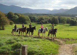 Killarney Horseback Riding